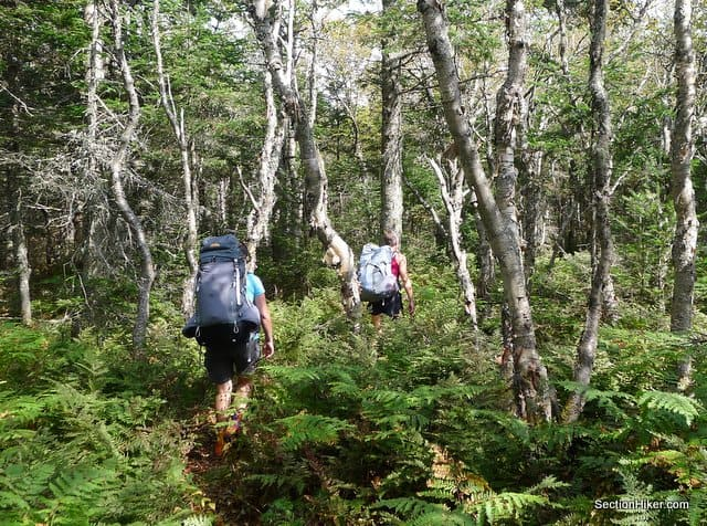 Hiking the southern section of the Kilkenny Ridge Trail