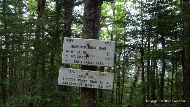 Beginning of Franconia Ridge Trail where it intersects with the Osseo Trail and The Flume Slide Trail