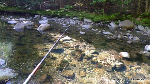 Very clear water in Hubbard Brook