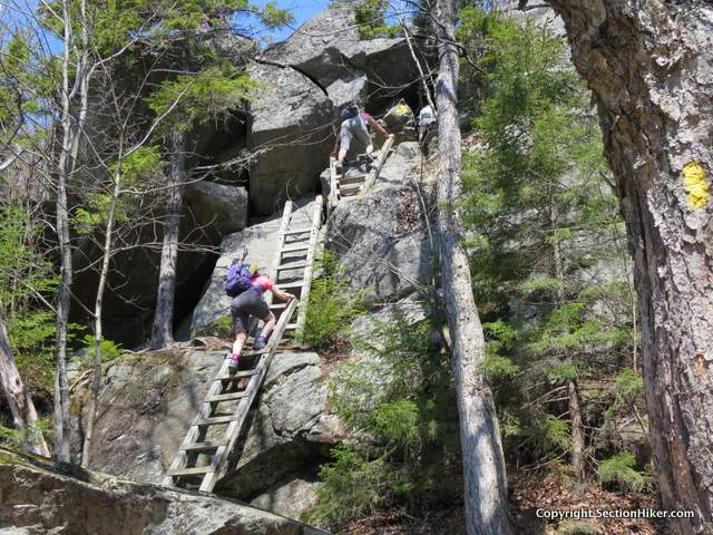 Climbing up the ladders on Mt Morgan is much less sketchy than climbing down them