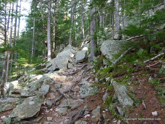 Climb steeply to Mt Crawford