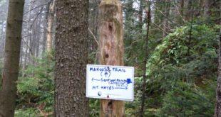 Mahoosuc Trail, New Hampshire Appalachian Trail