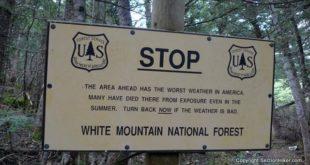 Treeline Warning, White Mountains