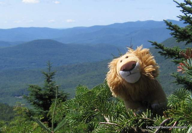 Ceasar on Sugarloaf, The Catskills