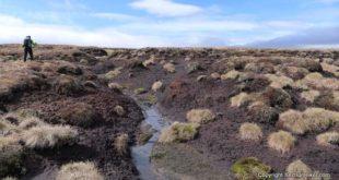Crossing a Scottish Peat Bog