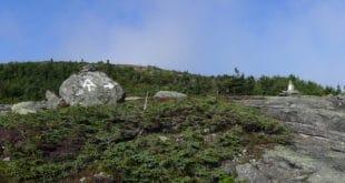 The Horn - Above Treeline