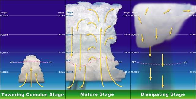 Stages of Thunderstorm Formation