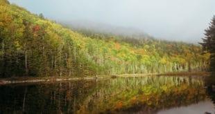 Gentian Pond in Autumn