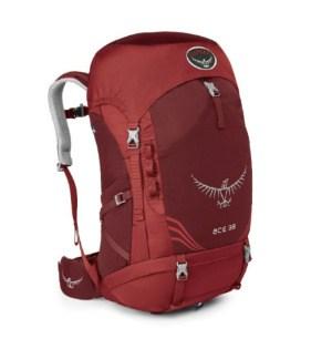Osprey Ace 38 Kids Backpack