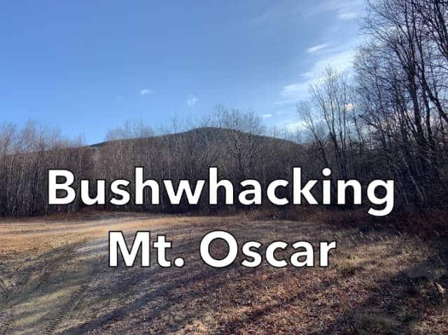 Bushwhacking Mt. Oscar NH