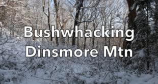 Bushwhacking Dinsmore Mountain
