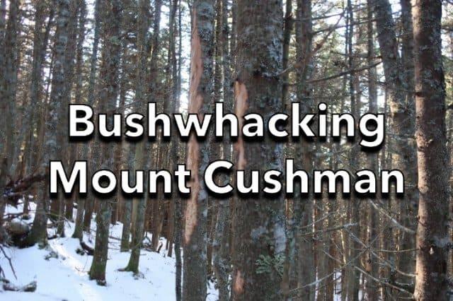 Bushwhacking Mt Cushman
