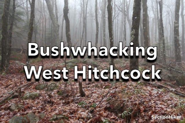 Bushwhacking West Hitchcock Mountain