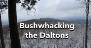 Bushwhacking the Daltons