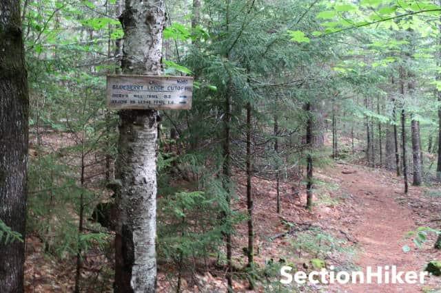 Blueberry Ledge Cutoff Trail Junction