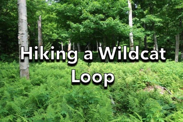 Hiking a Wildcat Loop