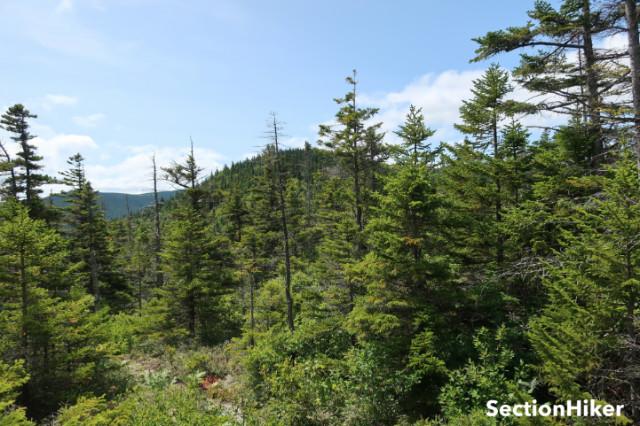 South Hale Mountain