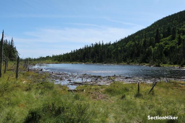 Zeacliff Pond was very low