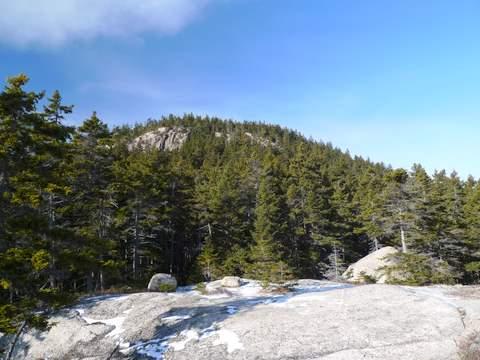 Mt Hedgehog Summit from Eastern Ledges