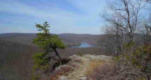 New York Appalachian Trail
