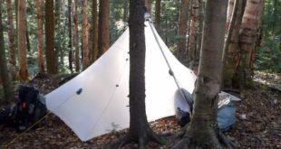Duomid in Woods